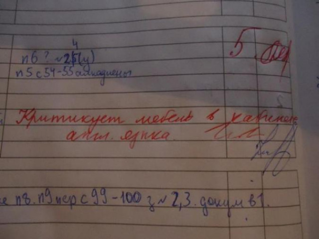 Записи в школьных дневниках, которые во всех красках описывают нескучные школьные будни