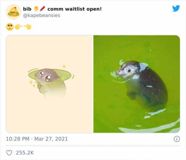 Художница превращает забавные фотографии с животными в очаровательные рисунки