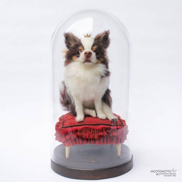 Художница создаёт реалистичные скульптуры животных из войлока