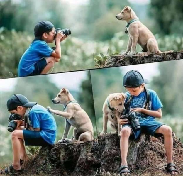 Эмоции и настроение в фотографиях