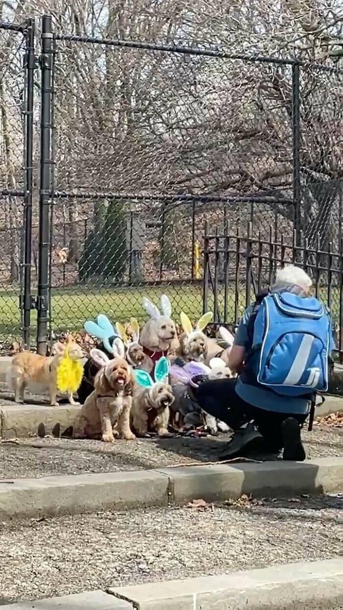 Обычная жизнь ньюйоркцев (15 фото)