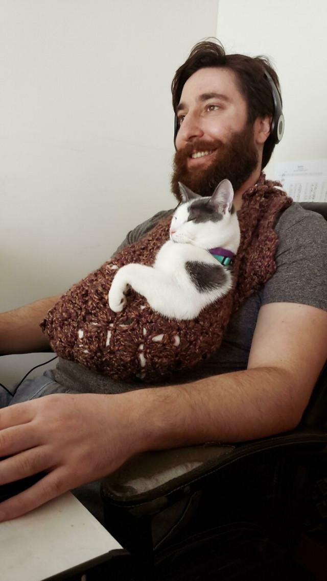 30 кошек, которым очень повезло с хозяевами