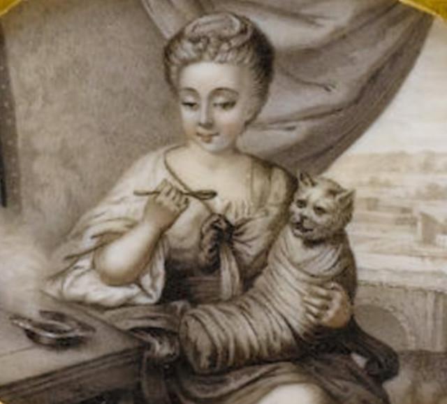 Мы перестали любить кошек! Ведь раньше их кормили с ложечки!