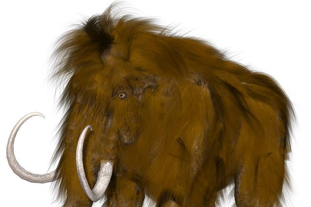 Топ-10: Интересные и странные факты про неандертальцев