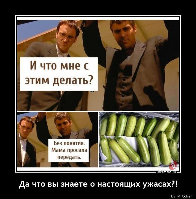 Демотиваторов сборник (13 фото)