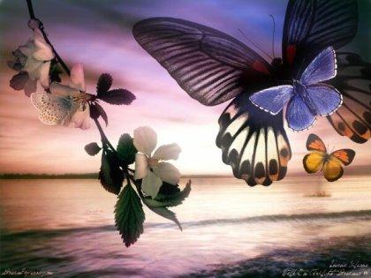 Гламурное воскресенье. Бабочки