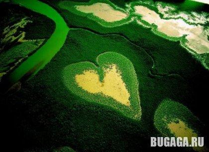 Природа, о любви