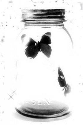 Чёрно-белые красивости
