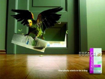 Креативная реклама, 8 фото