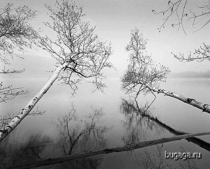 Потрясающие чёрно-белые фотографии!
