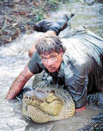 "Смерть ""охотника за крокодилами"" засняли на видео"