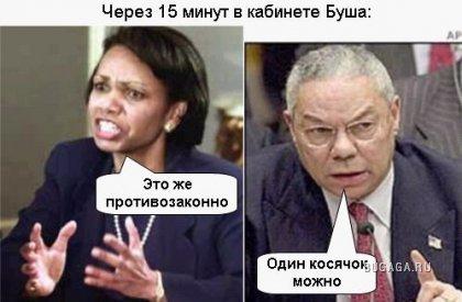 Президенты и трава. Смеялся ) Много фотографий дальше
