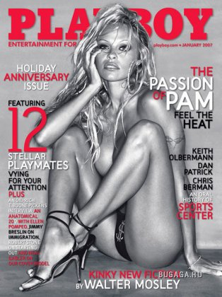 Pamela Anderson (18+)
