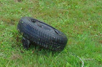 кто потерял колесо?