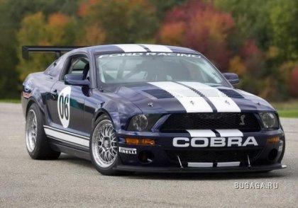 MUSTANG GT500KR & FR500GT