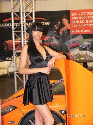 Luxury Car Show