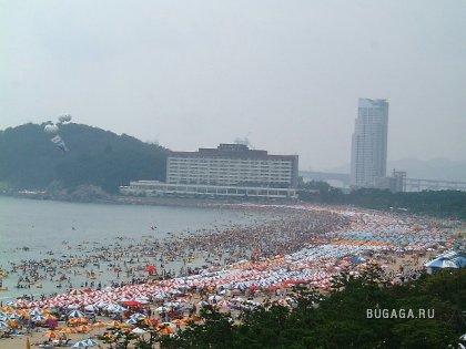 Отдых в Южной Корее