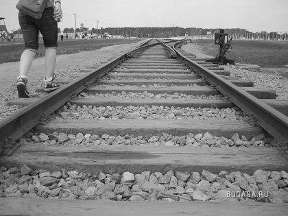 Освенцим (концентрационный лагерь)/продолжение