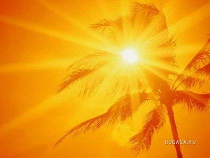 Солнце,море,пальмы...