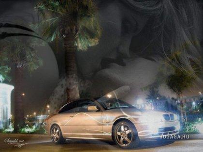 Sexy Lady & Car.