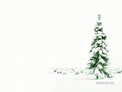 зимнее [wallpaper]