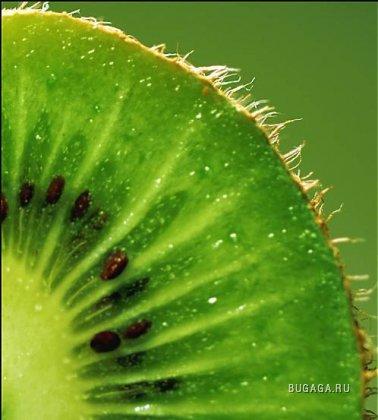 Зеленый цвет жизни