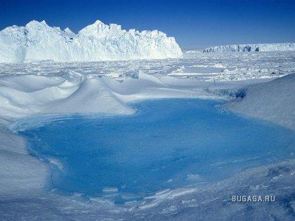 Фото-География: Антарктика